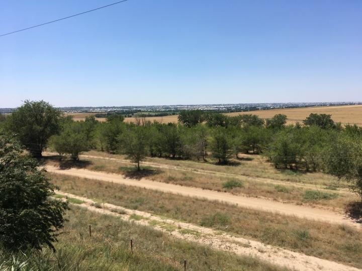 Shymkent 9